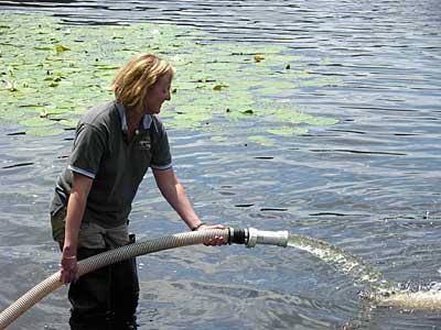 Pumping fish